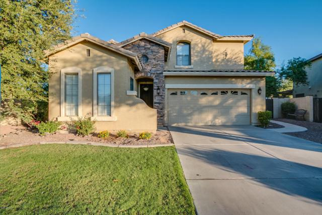 3308 E Pinot Noir Avenue, Gilbert, AZ 85298 (MLS #5677921) :: The Laughton Team