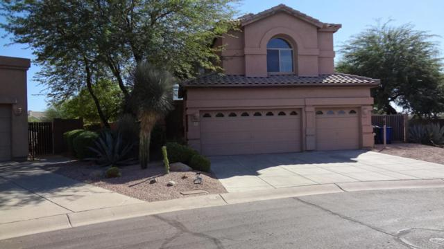 3432 N Tuscany Circle, Mesa, AZ 85207 (MLS #5677928) :: The Laughton Team