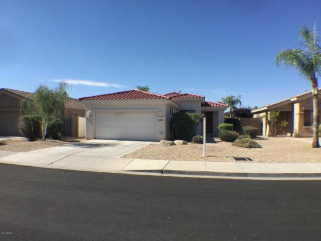 14477 W Clarendon Avenue, Goodyear, AZ 85395 (MLS #5678178) :: Kortright Group - West USA Realty