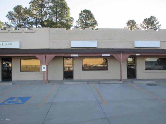 600 E State Highway 260, Unit J, Payson, AZ 85541 (MLS #5678316) :: The Kenny Klaus Team