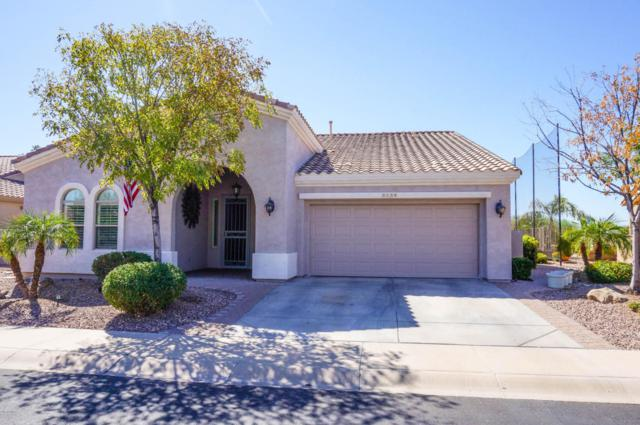 5124 S Peachwood Drive, Gilbert, AZ 85298 (MLS #5678350) :: Yost Realty Group at RE/MAX Casa Grande
