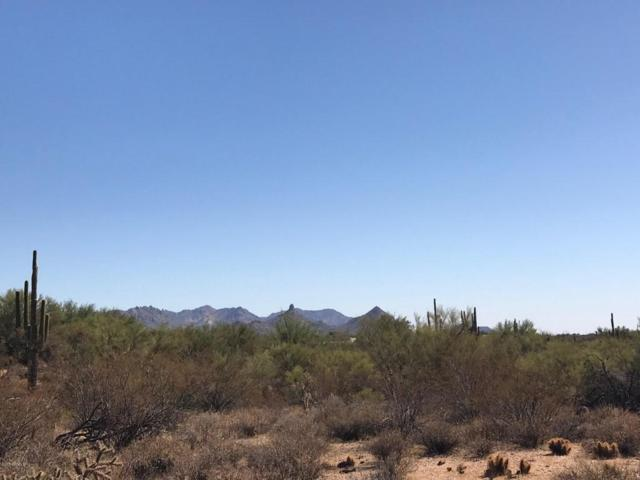 8383 E Whisper Rock Trail, Scottsdale, AZ 85266 (MLS #5678953) :: Santizo Realty Group