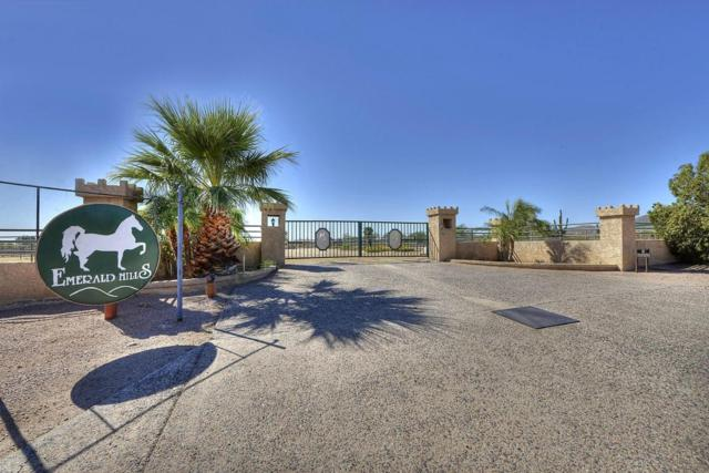 10030 N 124TH Street, Scottsdale, AZ 85259 (MLS #5679831) :: The Wehner Group