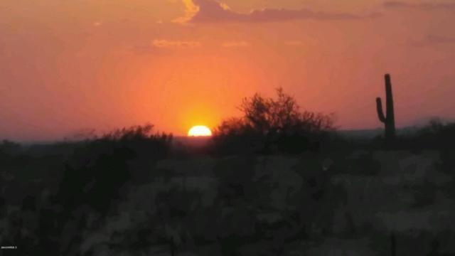 126 N 236TH Avenue, Buckeye, AZ 85396 (MLS #5679835) :: Desert Home Premier