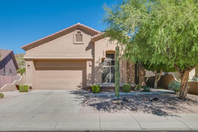 14296 E Thoroughbred Trail, Scottsdale, AZ 85259 (MLS #5679916) :: The Everest Team at My Home Group