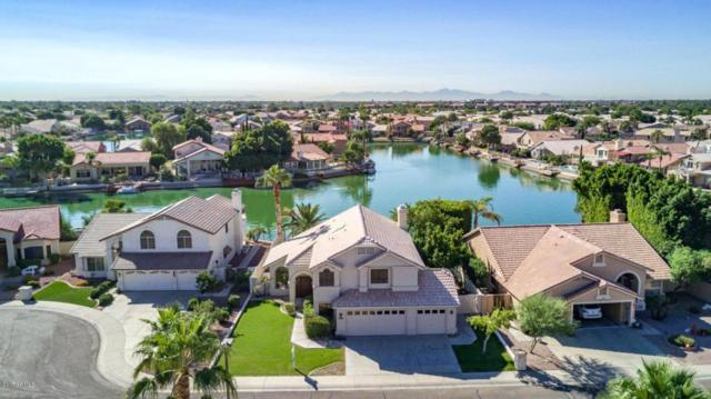 5567 W Rose Garden Lane, Glendale, AZ 85308 (MLS #5680069) :: Essential Properties, Inc.