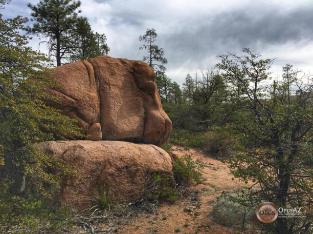 - E Spirit Rock Creek, Payson, AZ 85541 (MLS #5680174) :: The W Group
