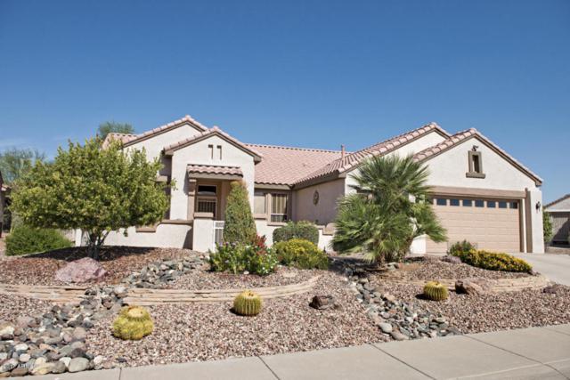 18407 N Borgata Drive, Surprise, AZ 85374 (MLS #5680188) :: Yost Realty Group at RE/MAX Casa Grande