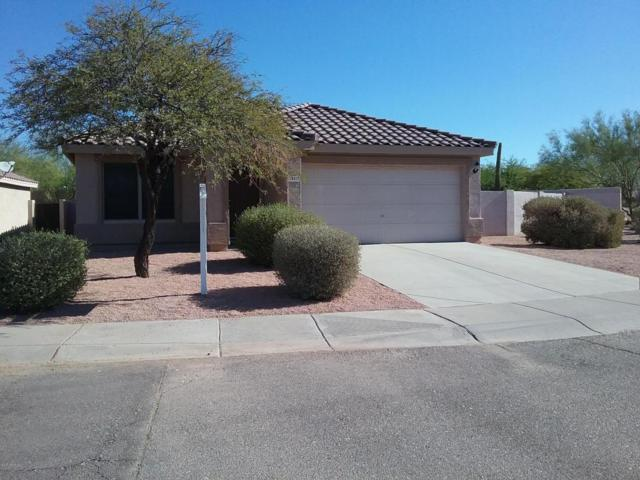 28617 N 50TH Place, Cave Creek, AZ 85331 (MLS #5680912) :: The Everest Team at My Home Group