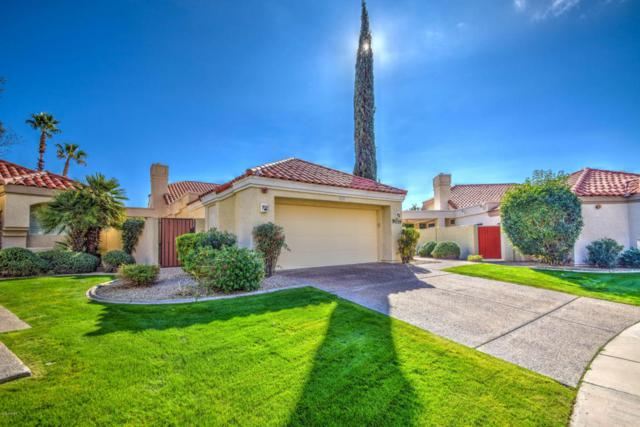 9039 N 107TH Place, Scottsdale, AZ 85258 (MLS #5680929) :: The Everest Team at My Home Group