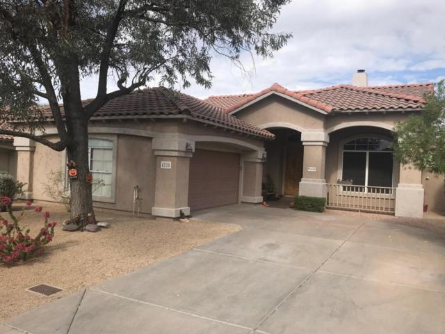 4228 E Rancho Caliente Drive, Cave Creek, AZ 85331 (MLS #5681429) :: RE/MAX Excalibur