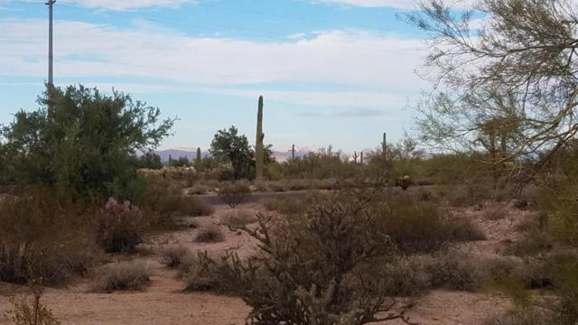 26385 E Wee Jog Road, Florence, AZ 85132 (MLS #5681544) :: Brett Tanner Home Selling Team
