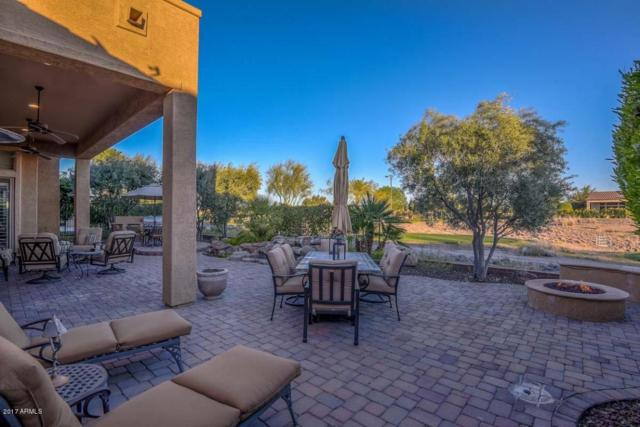 28247 N 128th Drive, Peoria, AZ 85383 (MLS #5681792) :: The Worth Group