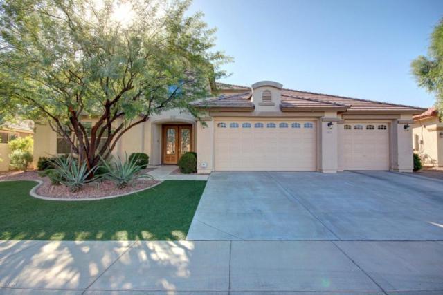 18371 W Ivy Lane, Surprise, AZ 85388 (MLS #5682332) :: Lux Home Group at  Keller Williams Realty Phoenix