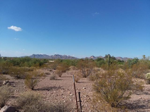 4924 E Roundup Street, Apache Junction, AZ 85119 (MLS #5682381) :: Yost Realty Group at RE/MAX Casa Grande