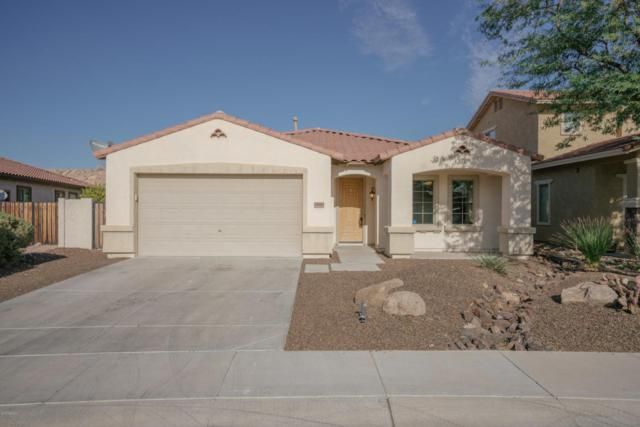 29693 N 69TH Avenue, Peoria, AZ 85383 (MLS #5682664) :: Yost Realty Group at RE/MAX Casa Grande