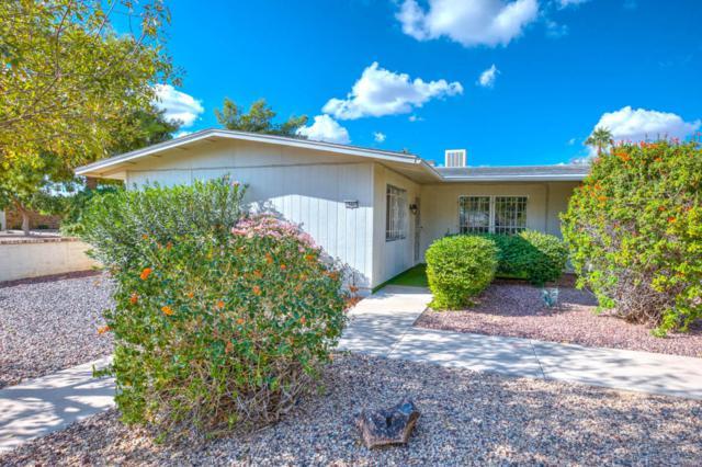 18447 N Opal Drive, Sun City West, AZ 85375 (MLS #5683671) :: Lux Home Group at  Keller Williams Realty Phoenix