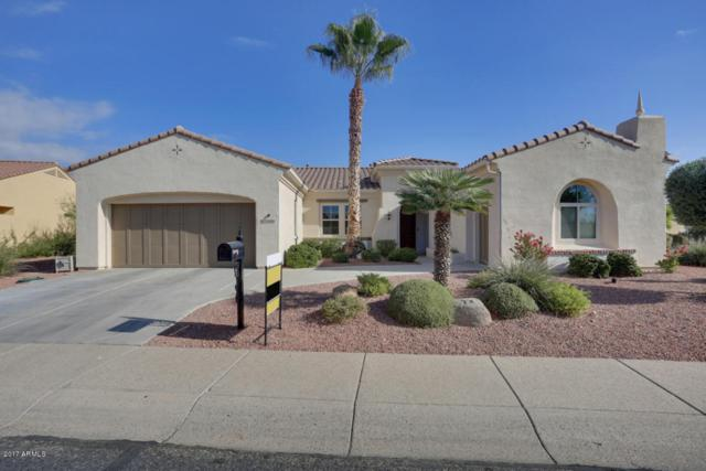 13404 W Anapama Drive, Sun City West, AZ 85375 (MLS #5684131) :: Desert Home Premier