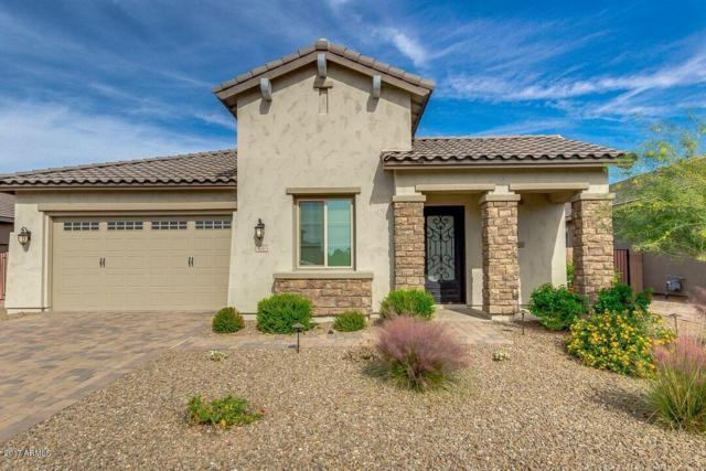 470 E Torrey Pines Place, Chandler, AZ 85249 (MLS #5684227) :: Occasio Realty