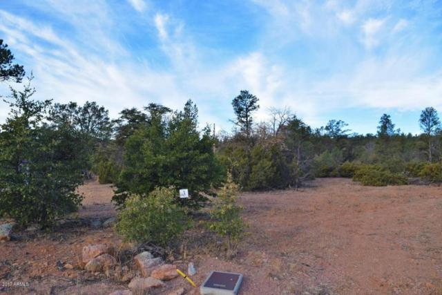 1405 W Norris Court, Payson, AZ 85541 (MLS #5684228) :: Phoenix Property Group