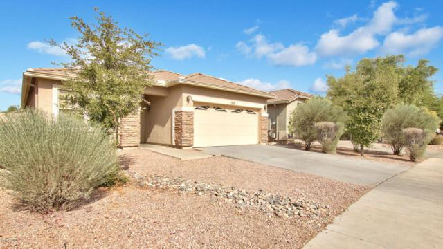 8838 W Hilton Avenue, Tolleson, AZ 85353 (MLS #5684438) :: Kelly Cook Real Estate Group