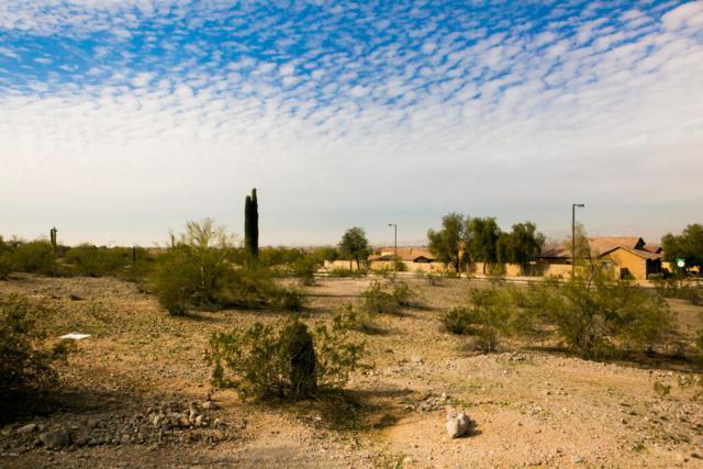 17934 W Estes Way, Goodyear, AZ 85338 (MLS #5684625) :: Occasio Realty