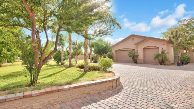 13846 N 184TH Avenue, Surprise, AZ 85388 (MLS #5684770) :: Kelly Cook Real Estate Group