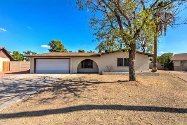 4441 W Cathy Circle, Glendale, AZ 85308 (MLS #5684909) :: Brent & Brenda Team