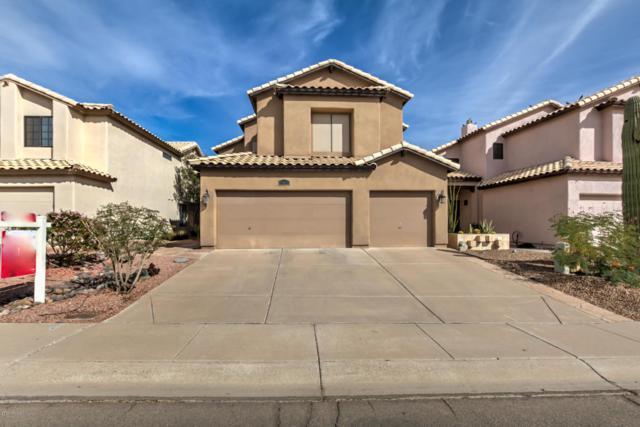 15033 S 39TH Street, Phoenix, AZ 85044 (MLS #5685101) :: Yost Realty Group at RE/MAX Casa Grande