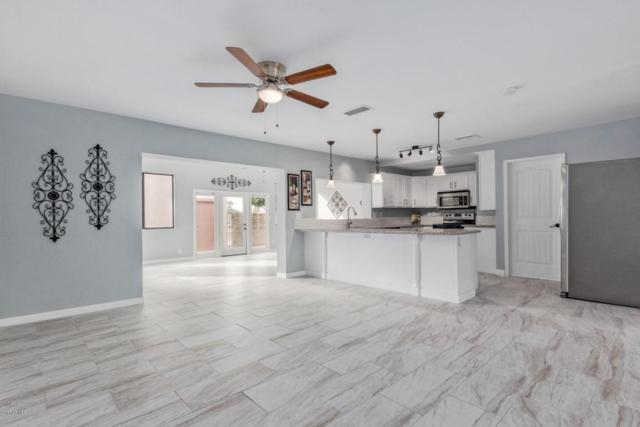 3021 W Villa Theresa Drive, Phoenix, AZ 85053 (MLS #5685224) :: Yost Realty Group at RE/MAX Casa Grande
