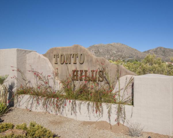 116XX E Blue Wash Road, Cave Creek, AZ 85331 (MLS #5685399) :: Santizo Realty Group