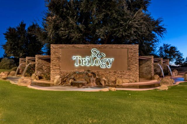4194 E Carob Drive, Gilbert, AZ 85297 (MLS #5685501) :: The Kenny Klaus Team
