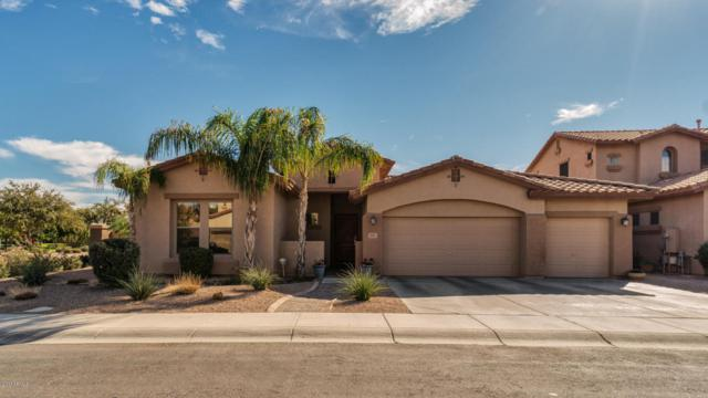 3801 E Leo Place, Chandler, AZ 85249 (MLS #5685634) :: Kortright Group - West USA Realty