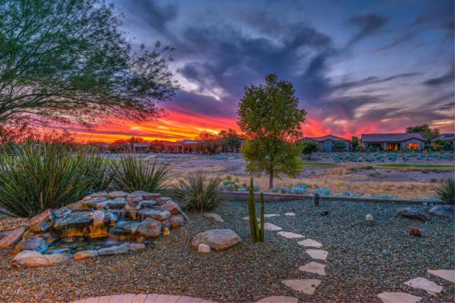 27560 N 125TH Avenue, Peoria, AZ 85383 (MLS #5685649) :: The Worth Group