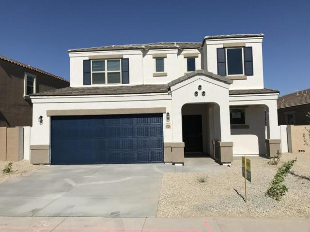 17025 N Rosemont Street, Maricopa, AZ 85138 (MLS #5685773) :: Yost Realty Group at RE/MAX Casa Grande