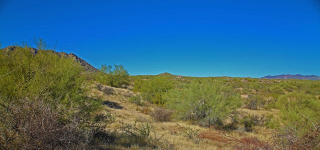 138xx E Dove Valley Road N, Scottsdale, AZ 85262 (MLS #5685798) :: Brett Tanner Home Selling Team