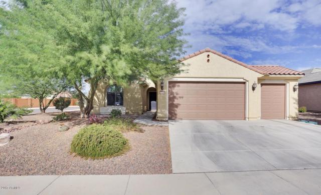 27106 W Tonopah Drive, Buckeye, AZ 85396 (MLS #5685995) :: Desert Home Premier