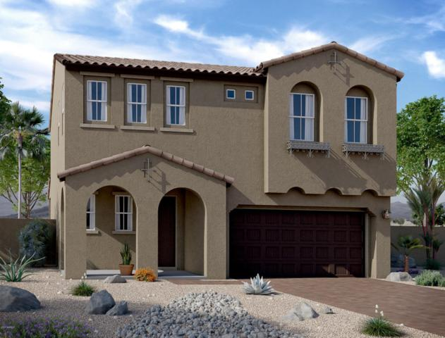 12904 N 144TH Drive, Surprise, AZ 85379 (MLS #5686083) :: The Everest Team at My Home Group