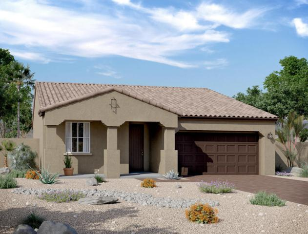 12868 N 144TH Drive, Surprise, AZ 85379 (MLS #5686087) :: Kortright Group - West USA Realty