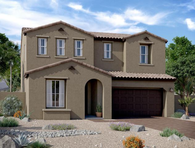 12922 N 144TH Drive, Surprise, AZ 85379 (MLS #5686092) :: Kortright Group - West USA Realty