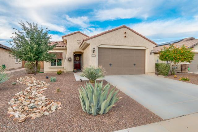26126 W Via Del Sol Drive, Buckeye, AZ 85396 (MLS #5686133) :: Desert Home Premier