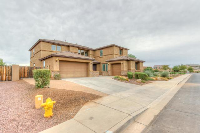 4359 S Marron, Mesa, AZ 85212 (MLS #5686182) :: The Everest Team at My Home Group
