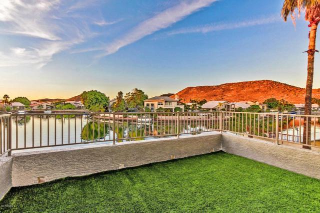 5660 W Abraham Lane, Glendale, AZ 85308 (MLS #5686253) :: REMAX Professionals