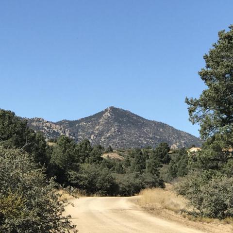17734 S Tawny Lane, Peeples Valley, AZ 86332 (MLS #5686636) :: Yost Realty Group at RE/MAX Casa Grande