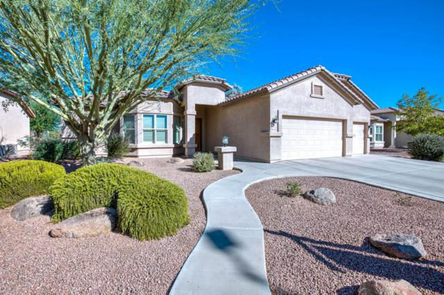 3020 E County Down Drive, Chandler, AZ 85249 (MLS #5686639) :: Kortright Group - West USA Realty