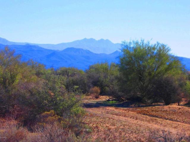 31500 N 160th Street, Scottsdale, AZ 85262 (MLS #5686855) :: Desert Home Premier