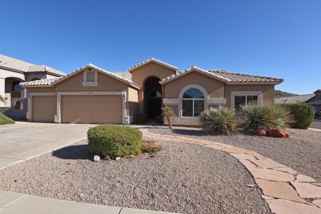 15273 S 31st Street, Phoenix, AZ 85048 (MLS #5686913) :: Yost Realty Group at RE/MAX Casa Grande