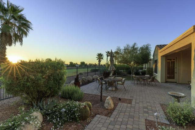 22713 N Galicia Drive, Sun City West, AZ 85375 (MLS #5686990) :: Desert Home Premier