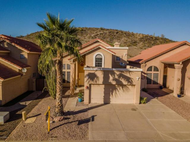4118 E Mountain Sage Drive, Phoenix, AZ 85044 (MLS #5687229) :: Jablonski Real Estate Group