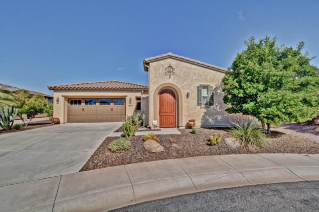 29257 N 130TH Drive, Peoria, AZ 85383 (MLS #5687489) :: The Worth Group